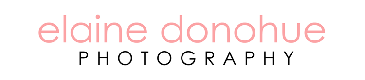 Elaine Donohue Photography Blog